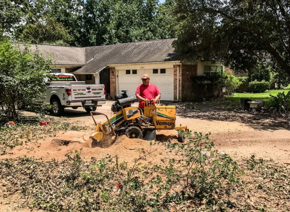 houston stump grinding